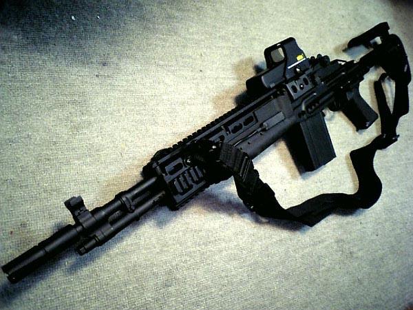 M14 Ebr Acog M14 ebr acog  M14 Ebr Acog